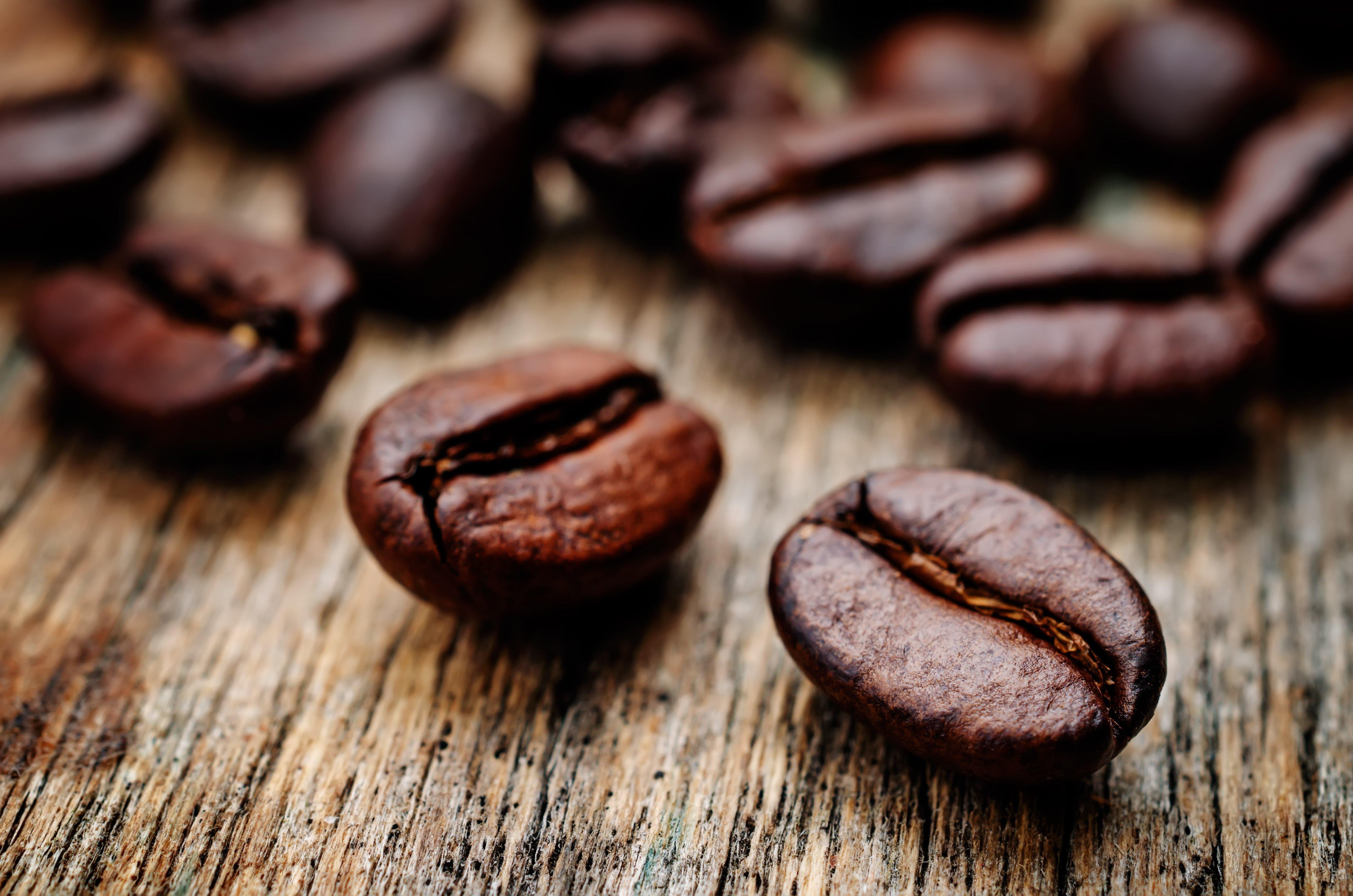 фото кофе арабика и робуста арки-перголы лавкой украсят